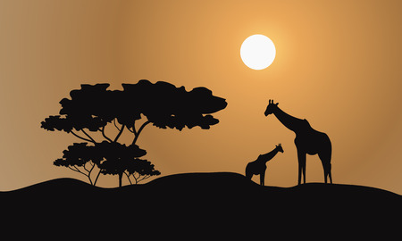giraffe silhouette: Giraffe silhouette in hills a very beautiful