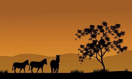kenya: Silhouette of zebra in fields africa with bron backgrounds Illustration