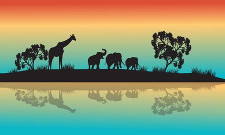 Siluetas de animales africanos en la mañana con cielo del arco iris