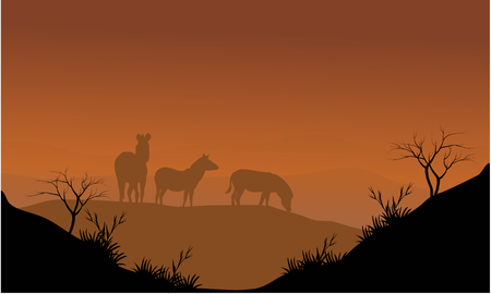 'wildlife reserve': Zebra silhouette in hills with brown backgrounds