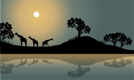 riverbank: Giraffe in riverbank scenery at the night Illustration