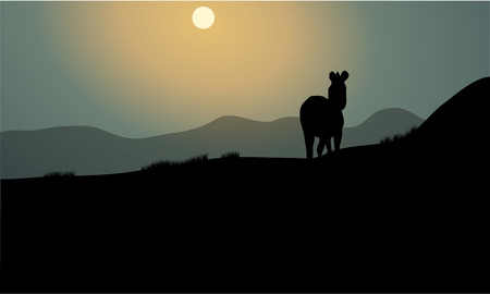 proboscis: Silhouette of single zebra at the night Illustration