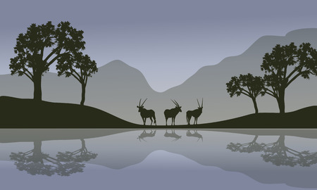 Antelope in riverbank scenery with gray backgrounds