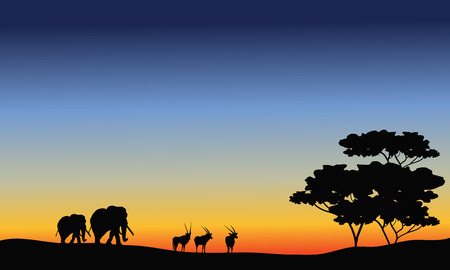 antelope: Elephant and antelope silhouette at the sunset