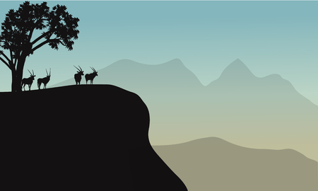 Vector silhouette of antelope in the hill