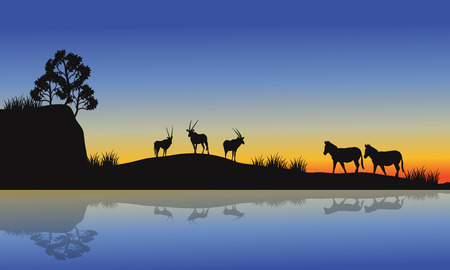 horizon over land: Antelope and zebra silhouette at morning in the river