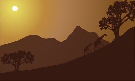 giraffe silhouette: Giraffe silhouette on the hill at the morning Illustration