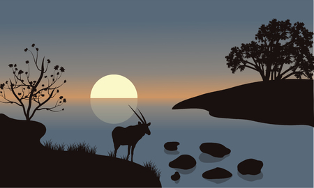 riverbank: Antelope silhouette on the riverbank at the morning