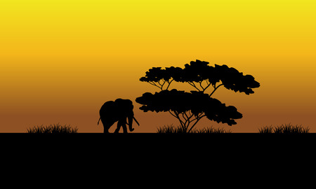 riverbank: One elephant silhouette in the fields at the sunset Illustration