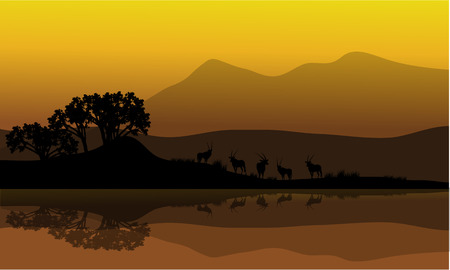 riverbank: Silhouette of antelope in riverbank at the morning