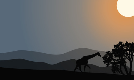giraffa: One zebra silhouette in hills with gray backgrounds Illustration