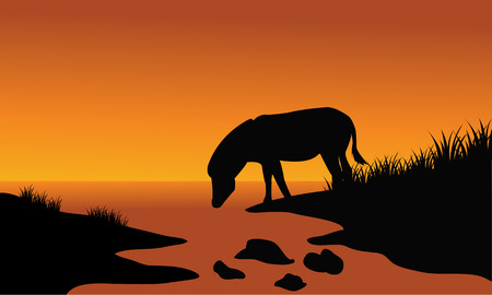 riverbank: Silhouette of one zebra in riverbank with orange backgrounds Illustration