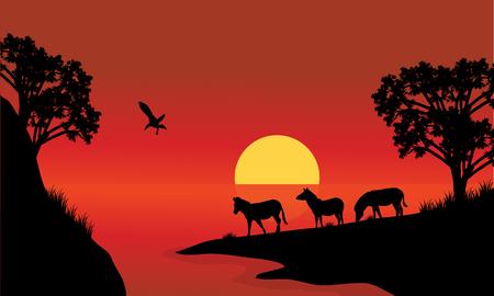 Silhhouette de zèbre dans le lac avec des arrière-plans rouges