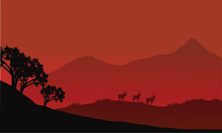 herbivore natural: Antelope silhouette on the mountain with red backgrounds