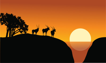 plant stand: Antelope silhouette on the cliff at the morning