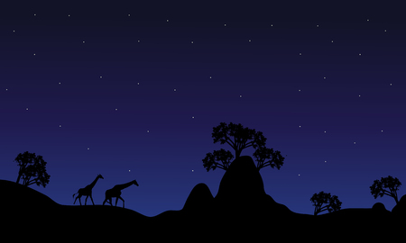 camelopardalis: Silhouette of giraffe at night on the hills