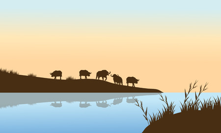 bison: Bison Sunrise on the river a beautiful scenery Illustration