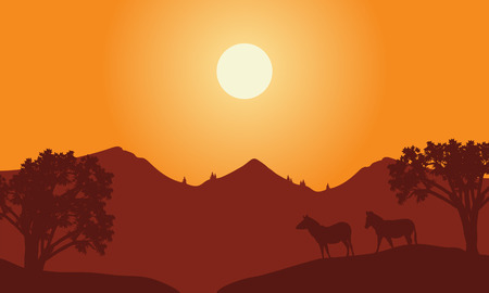 At sunset scenery with zebra silhouette  in the hills
