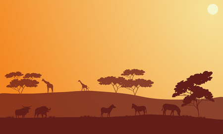 Silhouette of bison, zebra and giraffe in hills