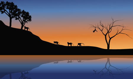 riverbank: Family monkey in riverbank scenery at the sunset Illustration