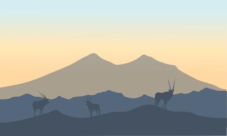 Antelope in hills scenery  oof silhouette at sunrise Иллюстрация