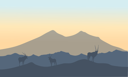 Antelope in hills scenery  oof silhouette at sunrise Illustration
