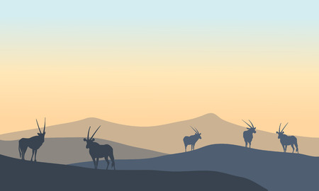 Landscape antelope silhouette in hills at the sunset