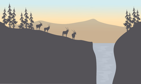 plant stand: Silhouette of antelope in waterfall at sunset