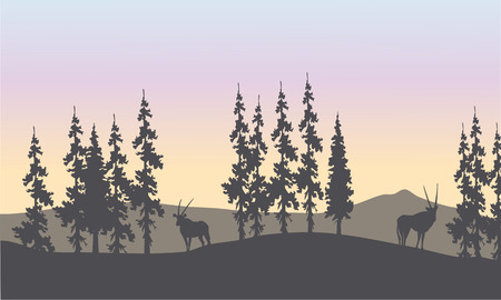 Silhouette of spruce and antelope in the hills Çizim