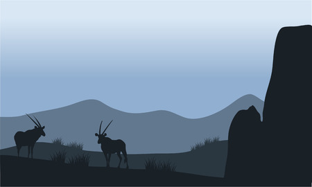 plant stand: Antelope in the hills silhouette  with rock