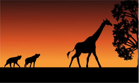 riverbank: Silhouette of panther and giraffe with orange backgrounds