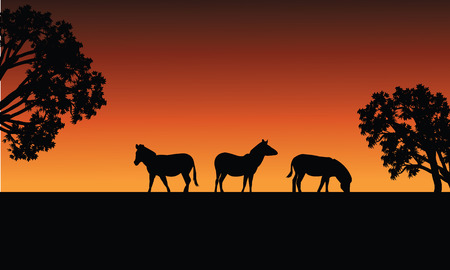 Zebra silhouette in fields at the afternoon Иллюстрация