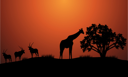 plant stand: Silhouette of antelope and giraffe at the morning