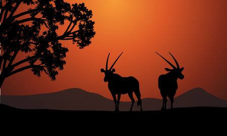 Silhouette of two antelope at the sunrise Çizim