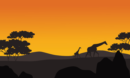 giraffe silhouette: Giraffe silhouette in park scenery at the afternoon Illustration