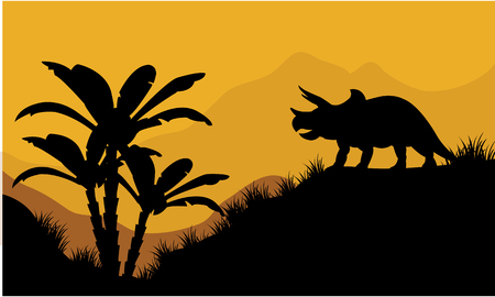 triceratops: Single triceratops in fields scenery at the sunset