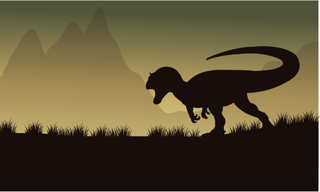Allosaurus silhouette in fields at the night