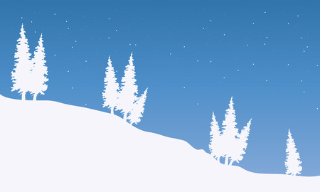 rocky mountain: Silhouette of spruce in snow at the night
