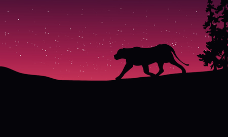 red sky: Lion at night scenery silhouettes on red sky Illustration