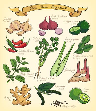 voedingsmiddelen: handraw illustratie van Thaise voedselingrediënten
