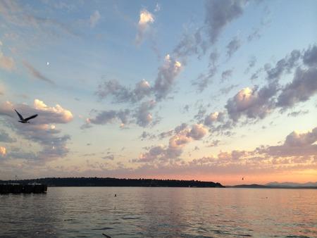 evenings: Seattle Evenings