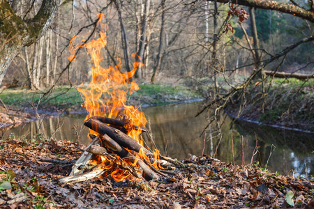 Bonfire on the banks of the creek in the spring forest. View from above.