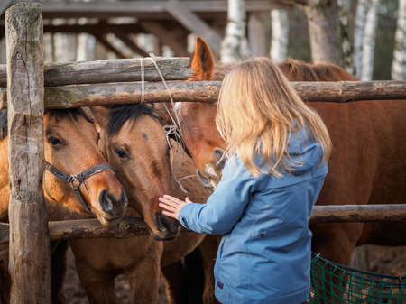 A girl in a blue jacket stroking two horses in an aviary.