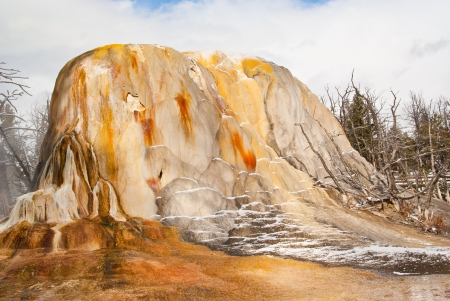 feature: Vibrant thermal feature at Mammoth Hot Springs in Yellowstone