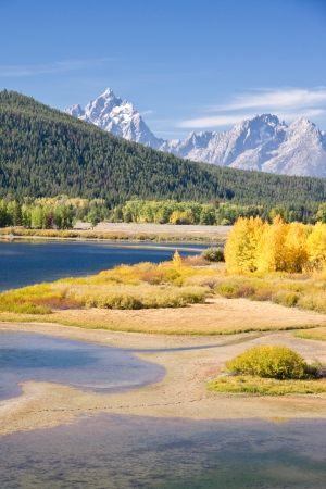 Autumn foliage in the Grand Teton mountain range