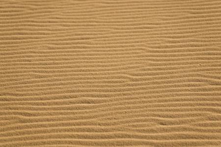 windswept: Windswept ripples on sand dunes in California Stock Photo