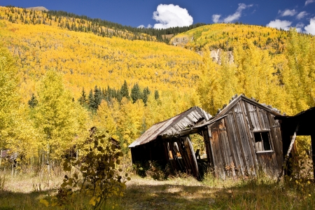 prospector: A dilapidated wooden cabin contrasts with brilliant Rocky Mountain fall colors Stock Photo
