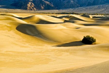 Desert Sand Dunes Stock Photo - 15190119