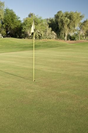 water feature: The putting green and pin of a lush desert golf course in mid-summer Stock Photo