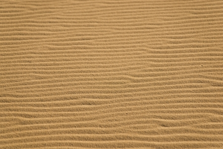 Windswept ripples on sand dunes in California Stock Photo